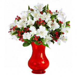 100 Blooms of Holiday Alstroemeria buy at Florist