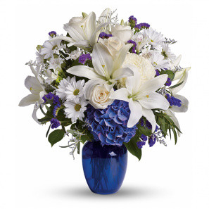 Beautiful in Blue buy at Florist