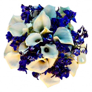 Blue and White Joy buy at Florist