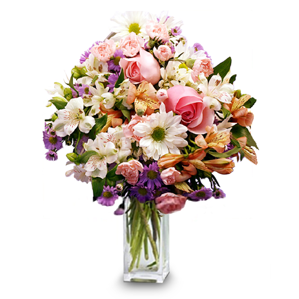 Delicate Delight buy at Florist