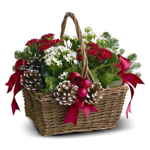 Joyeux Noel Planter Basket buy at Florist