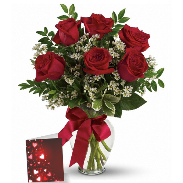 6 Red Roses & Card buy at Florist