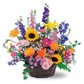 Summer Flower Basket buy at Florist