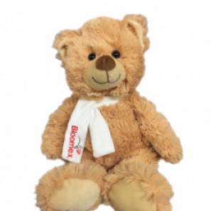 Teddy Bear buy at Florist